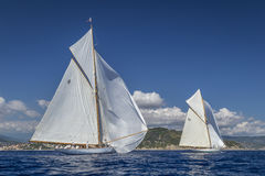 Classic Yacht Regatta - Gaff Cutter MOONBEAM IV & MOONBEAM III Stock Photography