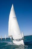 Classic yachts regatta. At Hauraki Gulf, Auckland, New Zealand stock photography