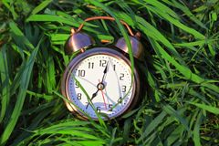 Classical alarm clock lies on grass Stock Photo