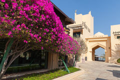 Classical Arabic style arch and bushes with pink flowers Royalty Free Stock Images