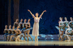 Free Classical Ballet Sleeping Beauty Stock Images - 94142984