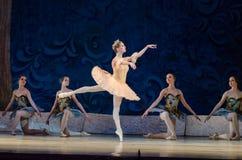 Free Classical Ballet Sleeping Beauty Stock Photo - 94143040