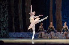 Free Classical Ballet Sleeping Beauty Stock Image - 94143041
