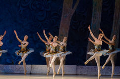 Free Classical Ballet Sleeping Beauty Royalty Free Stock Photography - 94143047