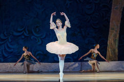 Free Classical Ballet Sleeping Beauty Royalty Free Stock Photography - 94143057