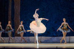 Free Classical Ballet Sleeping Beauty Stock Photos - 94143063