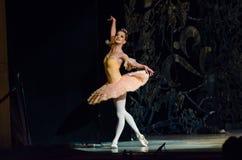 Free Classical Ballet Sleeping Beauty Stock Image - 94143091