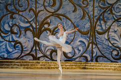 Free Classical Ballet Sleeping Beauty Royalty Free Stock Photography - 94143227
