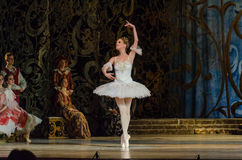 Free Classical Ballet Sleeping Beauty Stock Photography - 94143302