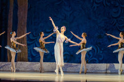 Classical ballet Sleeping beauty royalty free stock image