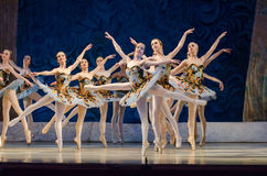 Classical ballet Sleeping beauty Royalty Free Stock Photo