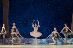 Classical ballet Sleeping beauty Royalty Free Stock Images