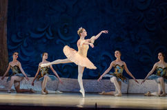 Classical ballet Sleeping beauty Stock Photo