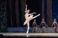 Classical ballet Sleeping beauty stock image