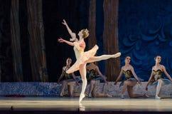 Classical ballet Sleeping beauty Stock Photos