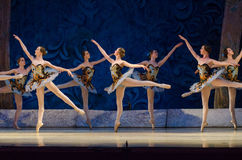 Classical ballet Sleeping beauty Royalty Free Stock Photography