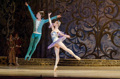 Classical ballet Sleeping beauty Stock Images
