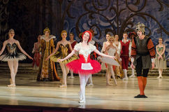 Classical ballet Sleeping beauty. DNIPRO, UKRAINE - JUNE 3, 2017: Classical ballet Sleeping beauty performed by members of the Dnipro Opera and Ballet Theatre Stock Photos