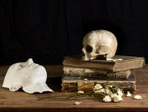Classical Baroque Still-life in Vantias style with Skull and Death-Mask on a black Background. Classical Baroque Still-life in Vanitas style with Skull and Death Stock Images