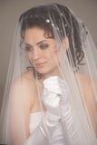 Classical bride Royalty Free Stock Photos