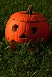 Classical carved gouged out pumpkin Hallowen Jack O Lantern lying on green lawn with autumn leaves, sunbathing in morning sunshine. Natural sunlight Stock Images