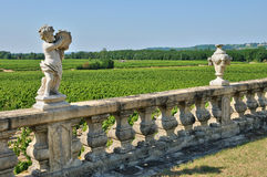 Classical castle of Malle in Gironde Stock Photography