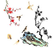 Classical China-- flower and bird Stock Photography