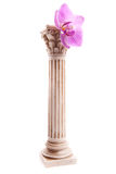 Classical column with flower Royalty Free Stock Photo