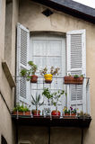 Classical decorated french window with flowers Royalty Free Stock Image