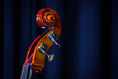 Classical double-bass instrument close-up view. Music concept Stock Image