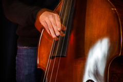 Classical double-bass instrument close-up view. Music concept Royalty Free Stock Images