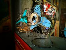 Classical fans royalty free stock images