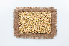 Classical frame made of burlap with grains of barley Royalty Free Stock Image