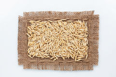 Classical frame made of burlap with grains of oats Stock Image
