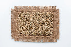 Classical frame made of burlap with grains of rye Stock Image