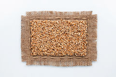 Classical frame made of burlap with grains of wheat Royalty Free Stock Images