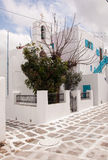 Classical greek church in town of Mykonos and trees... Royalty Free Stock Images