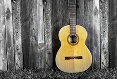 Classical Guitar. Stock Image