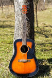 Classical guitar leaning against tree Royalty Free Stock Image