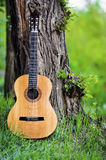 Classical guitar in park Stock Photography