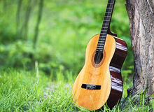 Classical guitar in park Stock Image