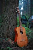 Classical guitar in park Stock Photo