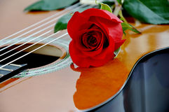 Classical guitar and rose. Stock Photos