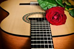 Classical guitar and rose. Royalty Free Stock Image