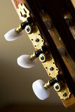 Classical guitar tuners. Closeup image of gold plated classical guitar tuners Stock Photography