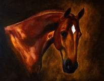Classical horse portrait painting Royalty Free Stock Images