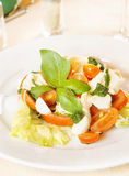 Classical Italian salad made of fresh vegetables Royalty Free Stock Photo
