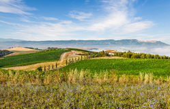 The classical landscape of Tuscany Royalty Free Stock Photography