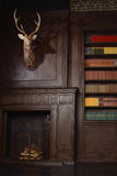 Classical library room  in the victorian style Royalty Free Stock Photo