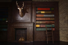 Classical library room  in the victorian style Stock Images
